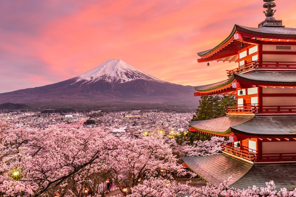 Chureito Pagoda and Mt. Fuji in the spring with cherry blossoms Solo Female Traveller