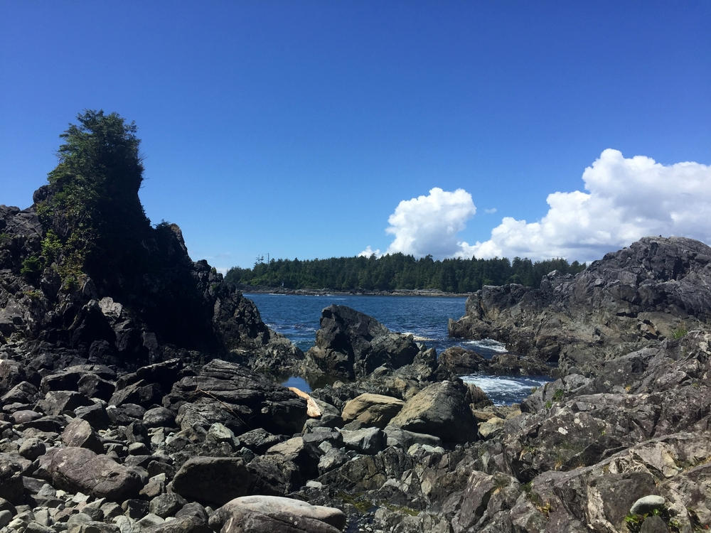 Hot Spring Cove