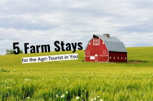 red barn text
