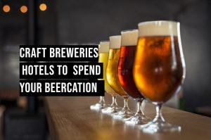 Glasses with different sorts of craft beer on wooden bar