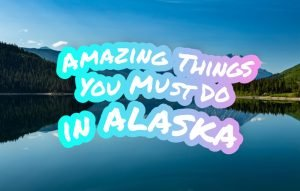 5 Amazing Things You Must Do in Alaska