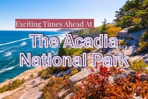 Exciting Times Ahead At The Acadia National Park
