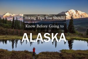 Hiking Tips You Should Know Before Going to Alaska